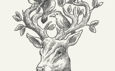 Drawing and Shading: Complete Course